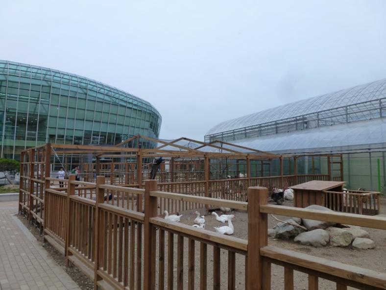 gyeongju bird park_06