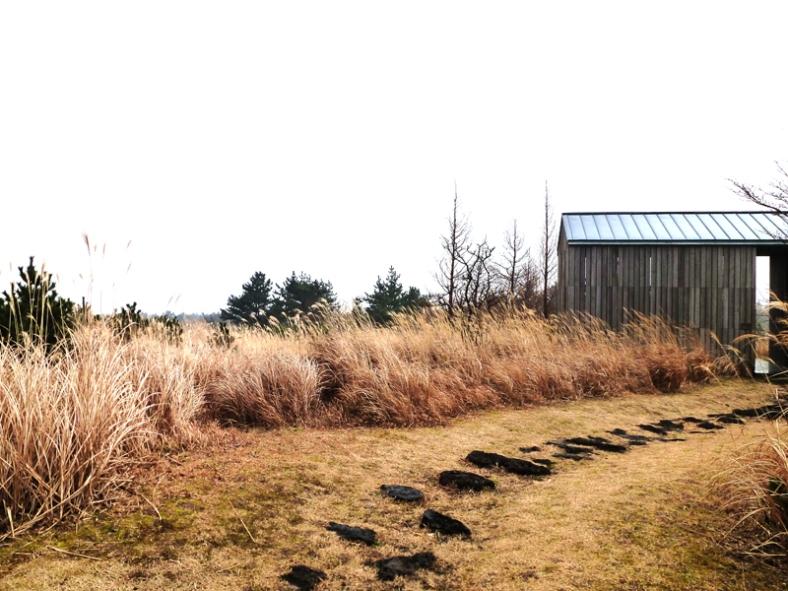 wind museum 12